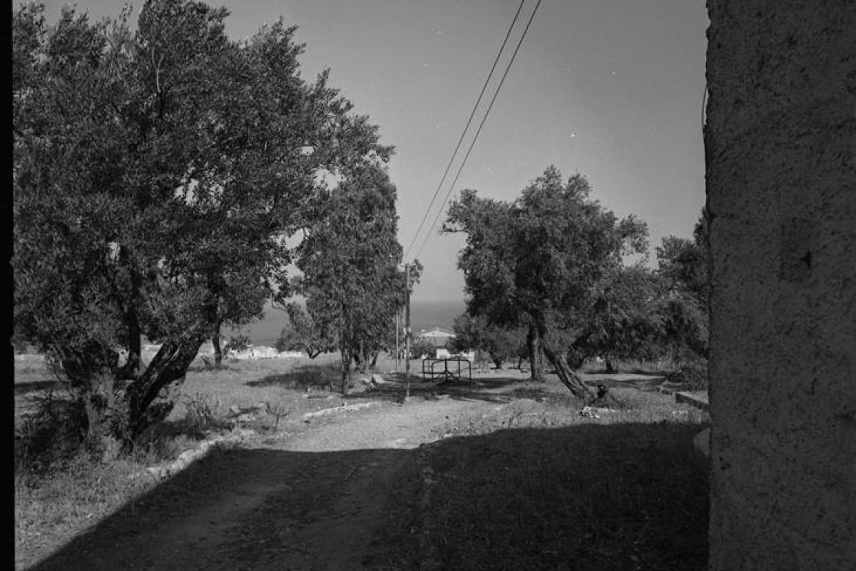 1967-08-00 Trappeto, il terreno del Centro Studi 33 (Copy)