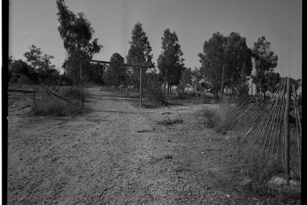 1967-08-00 Trappeto, il terreno del Centro Studi 40 (Copy)